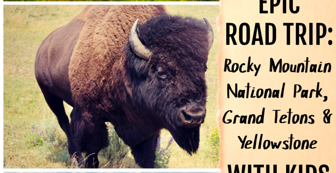 Epic National Park Road Trip: Rocky Mountains, Grand Tetons, Yellowstone